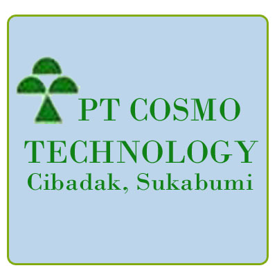 PT COSMO TECHNOLOGY